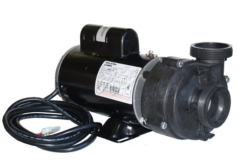 Sundance Spa 2 Hp 2 Speed 240 Volt Vico Pump And Motor